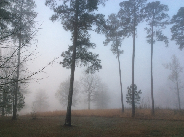 Fog as we set out to cross the Mississippi